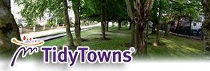 tidytowns
